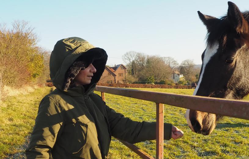 me-parka-horses3