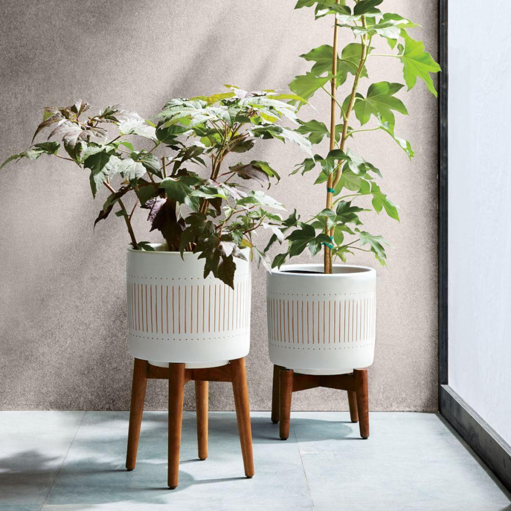 westelm-mid-century-turned-wood-leg-planters-whitegold