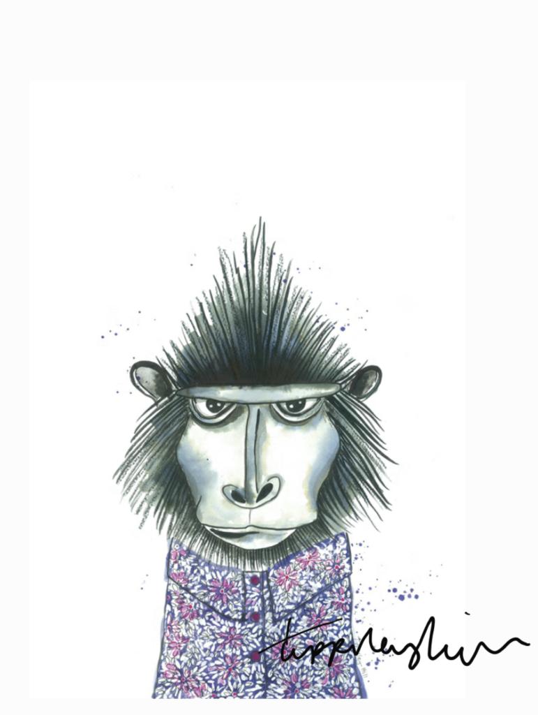 troy-the-monkey