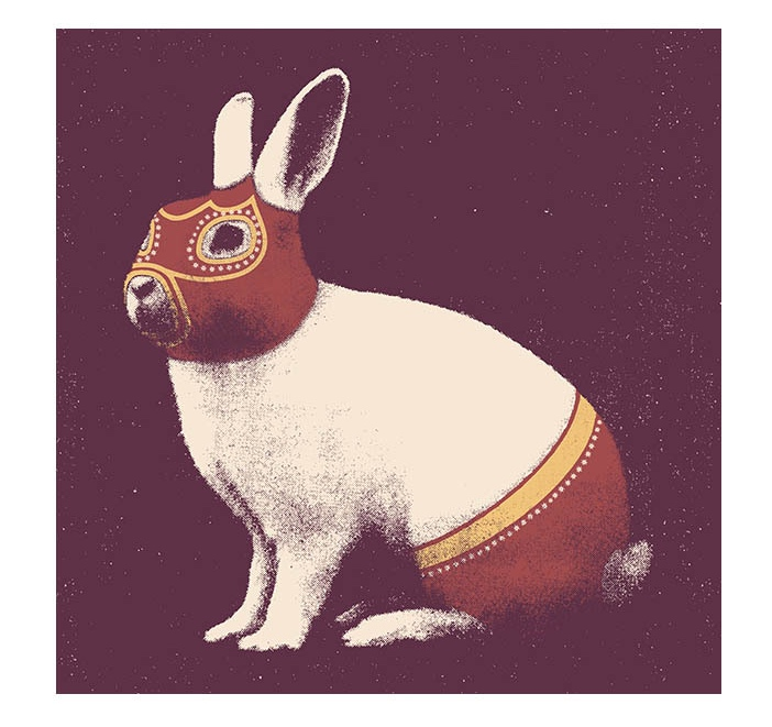 tindesign-wrestling-rabbit
