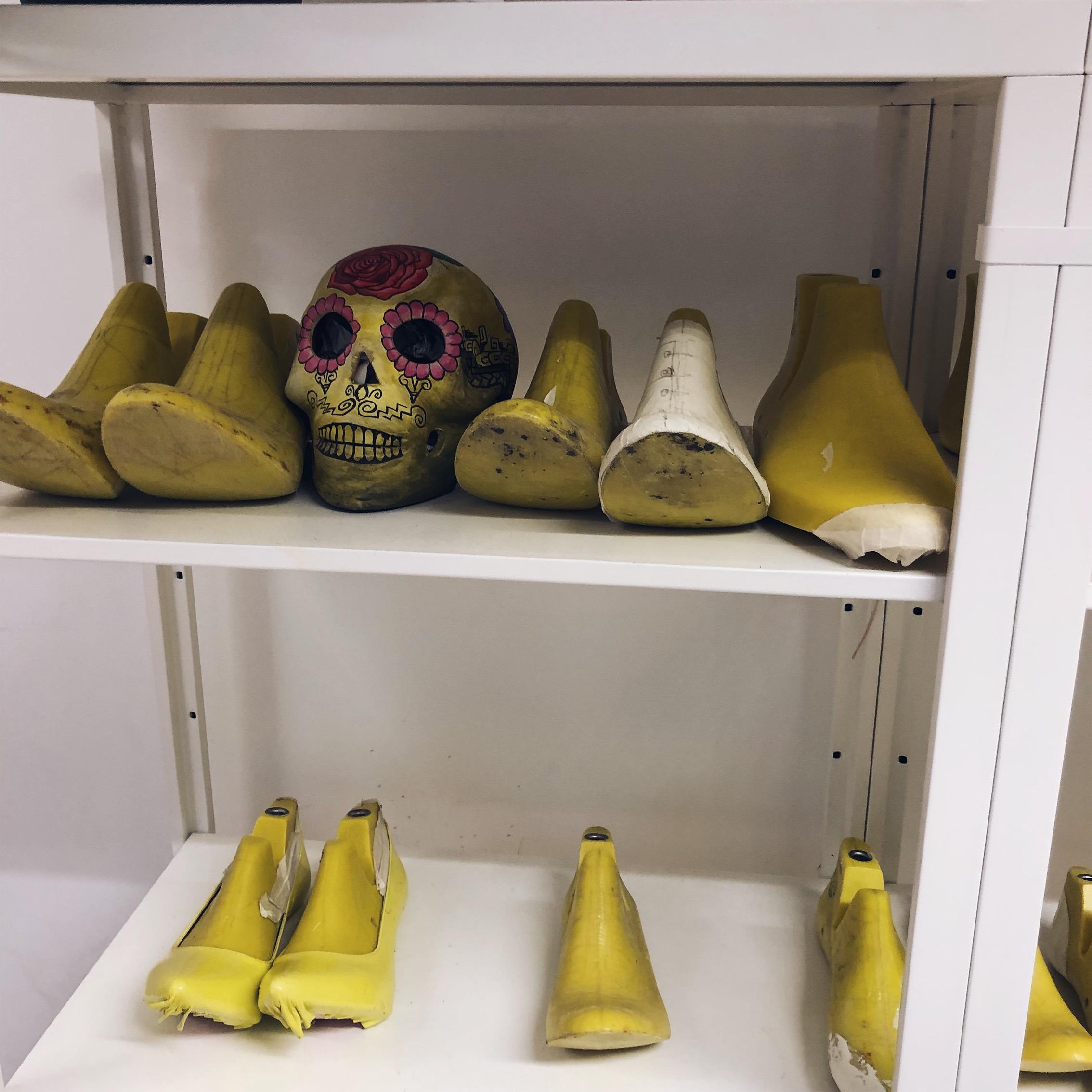 Skull in the Lasts!